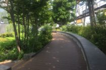 豊島の森0